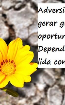 5 Dicas para superar adversidades – Por Daiana Demenighi