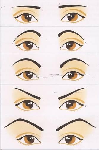 Resultado de imagem para sobrancelhas perfeitas para cada tipo de rosto