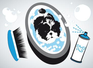 Saiba como comprar produtos para os pets