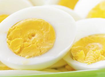 5 benefícios e mitos sobre o ovo